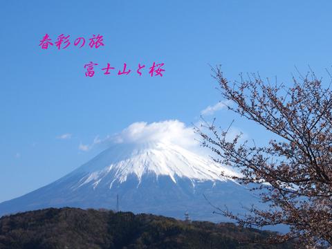 b0012595_022927.jpg