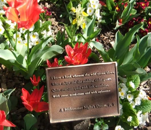 シェークスピア・ガーデンの春の様子_b0007805_2313409.jpg