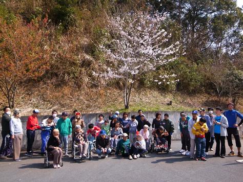 桜の季節!_a0154110_9421735.jpg