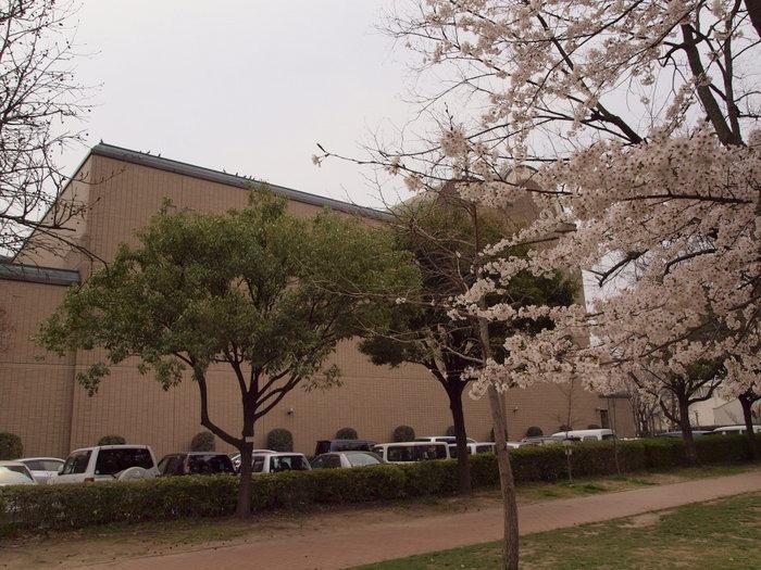 五日市中央公園の桜と佐伯区民文化センター_c0116915_2321307.jpg