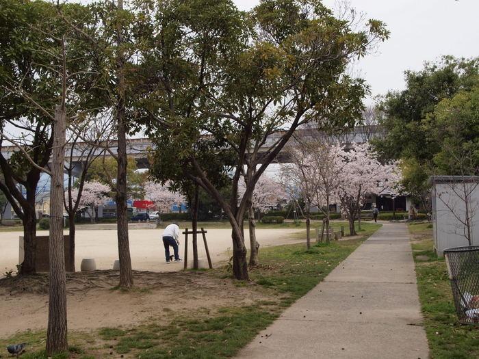 五日市中央公園の桜と佐伯区民文化センター_c0116915_23222285.jpg