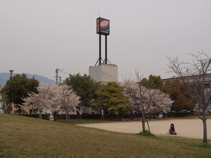 五日市中央公園の桜と佐伯区民文化センター_c0116915_23241233.jpg