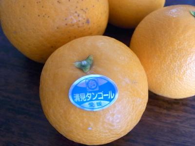 ++柑橘類の食べ比べ大会のスタートです++_e0140921_15305855.jpg