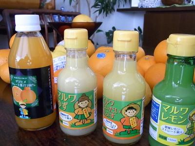 ++柑橘類の食べ比べ大会のスタートです++_e0140921_1533142.jpg