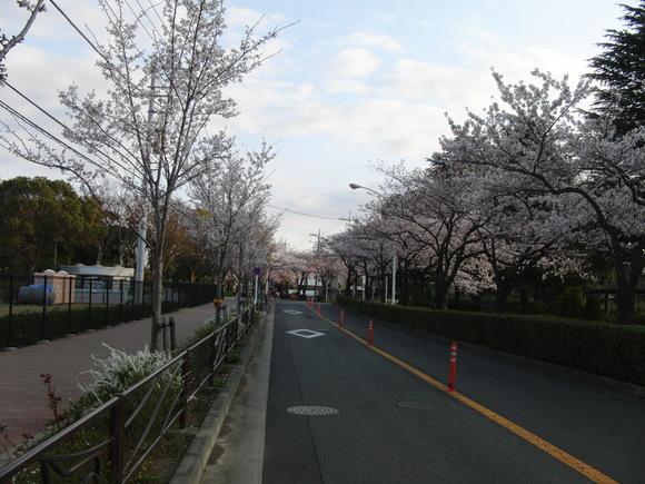 昇仙峡でほうとうツーリング_c0102732_15143085.jpg