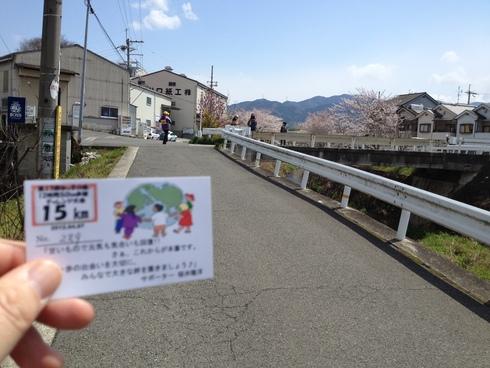 50km歩行に参加してきました。_d0085634_16484730.jpg