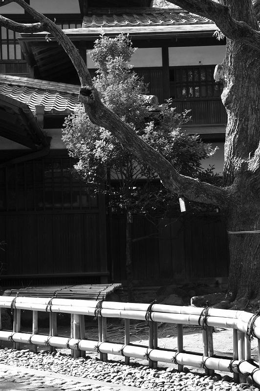 駒場公園_f0050534_1751568.jpg