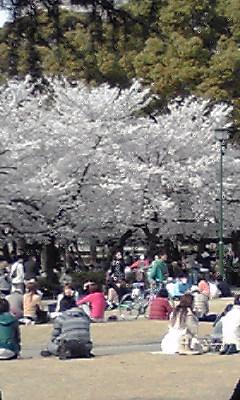 鶴舞公園_e0034141_15294972.jpg