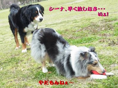 鶴見緑地公園_e0270846_023051.jpg