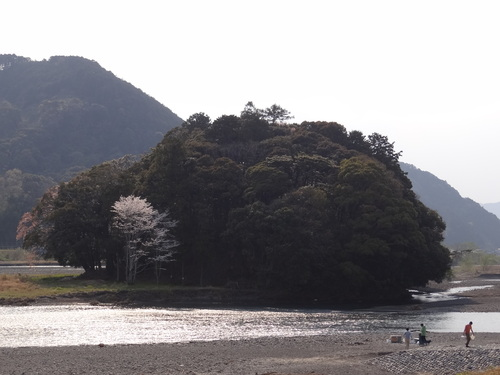 桜咲く木枯しの森_e0240147_22581252.jpg