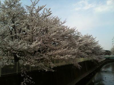 春満載!_e0248573_1853047.jpg