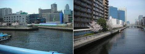 散歩を楽しく/今日の昼休みは運河の花見_d0183174_1952623.jpg