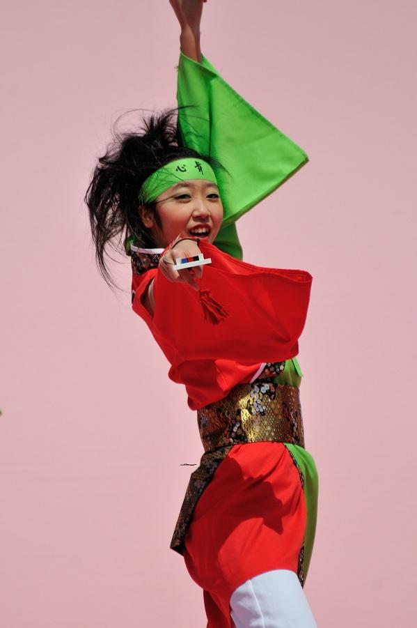 2012 京都さくらよさこい_f0184198_23463246.jpg