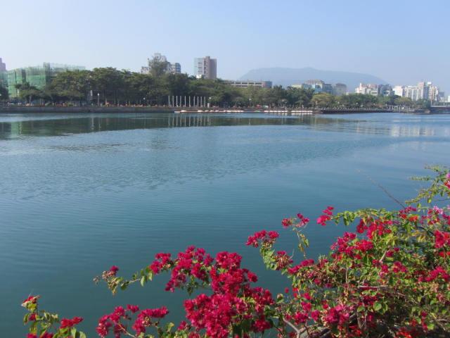 台湾4日目①_a0100706_2236441.jpg