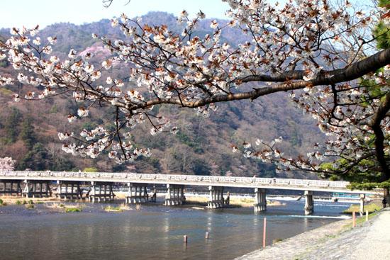 嵐山 渡月橋と亀山公園_e0048413_1884969.jpg