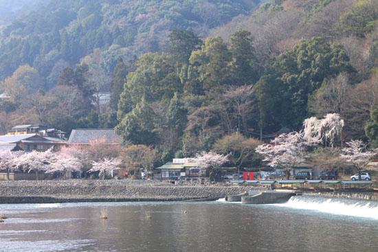 嵐山 渡月橋と亀山公園_e0048413_1892289.jpg