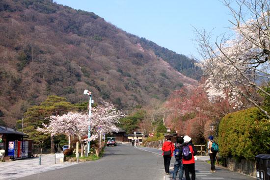 嵐山 渡月橋と亀山公園_e0048413_189348.jpg