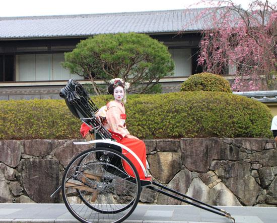 嵐山 渡月橋と亀山公園_e0048413_1895648.jpg