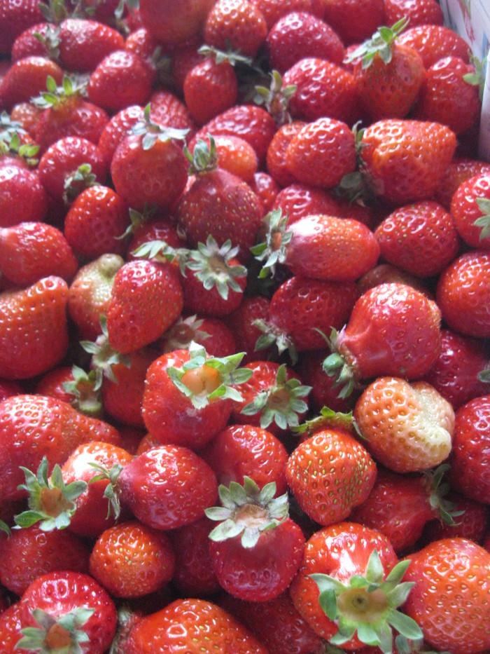 あまおう「天然シロップ苺」作り~☆_a0125419_1633163.jpg