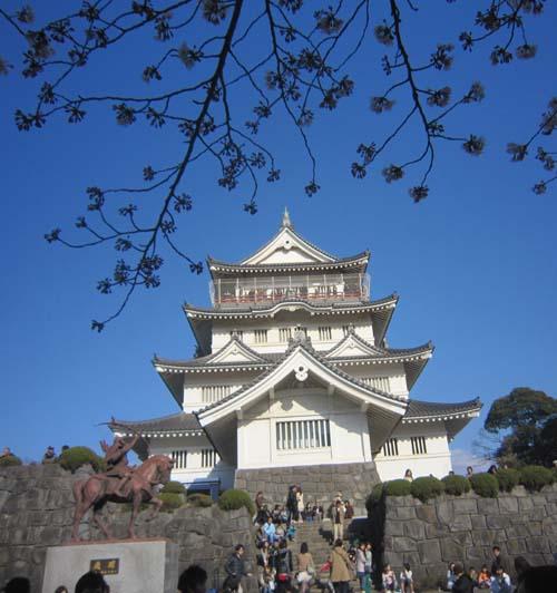 桜だ!!城(ジョー)!!_f0129627_14401466.jpg