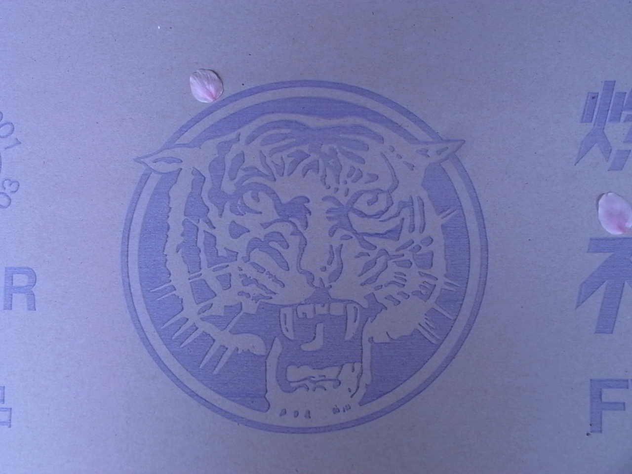 タイガー_f0234628_10134160.jpg
