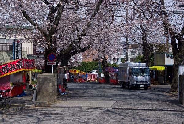 桜_a0248481_09281.jpg