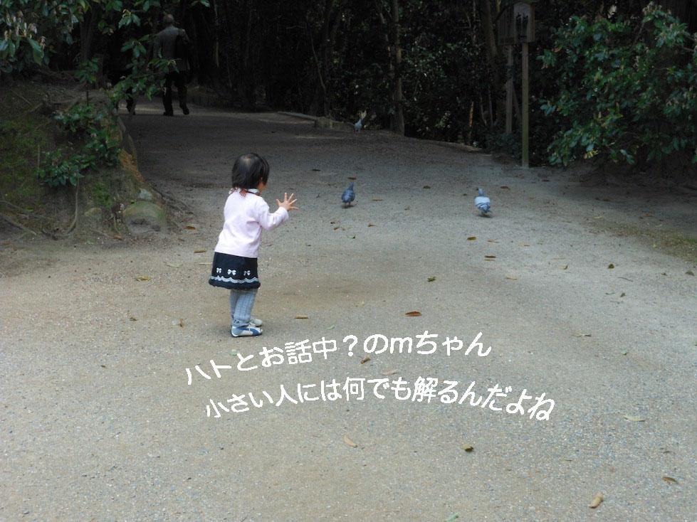 a0207396_1831856.jpg