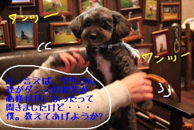b0130018_0111950.jpg