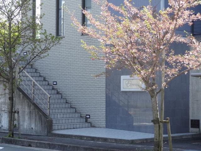 掛川市長谷☆2LDK 賃料60,000円_a0253729_12252146.jpg