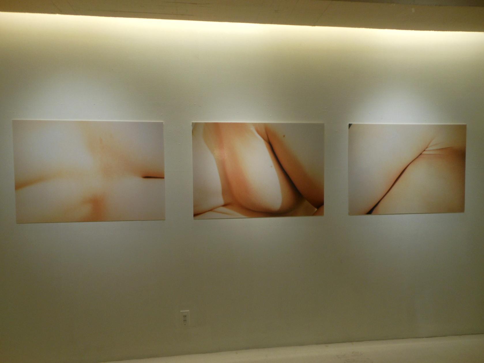 1702)「札幌市立大学 写真・映像部「SEED」 -拡張する視覚-(4人展)」アイボリー 4月11日(木)~4月15日(日)_f0126829_21341564.jpg