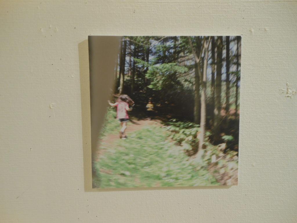 1702)「札幌市立大学 写真・映像部「SEED」 -拡張する視覚-(4人展)」アイボリー 4月11日(木)~4月15日(日)_f0126829_23235413.jpg