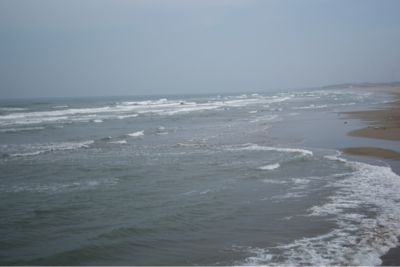 今日の海_c0132732_14463438.jpg