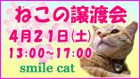 ライバル登場!? smile catのNewフェイス♪_b0024945_1118734.jpg