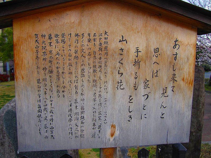 毎年楽しみな、「木屋町通り」の桜便り_e0237645_16212041.jpg