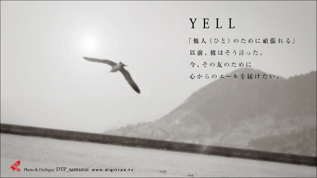 YELL_a0054755_827252.jpg