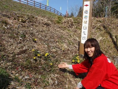 こんなにたくさんの福寿草見たのはじめて!_a0096989_21495485.jpg