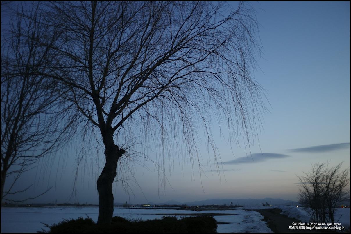 シダレヤナギと恵庭岳のある夕暮れの風景_f0042194_23132219.jpg