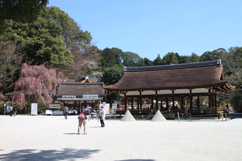 上賀茂神社 咲きそろい_e0048413_223038.jpg