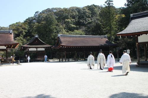上賀茂神社 咲きそろい_e0048413_223261.jpg