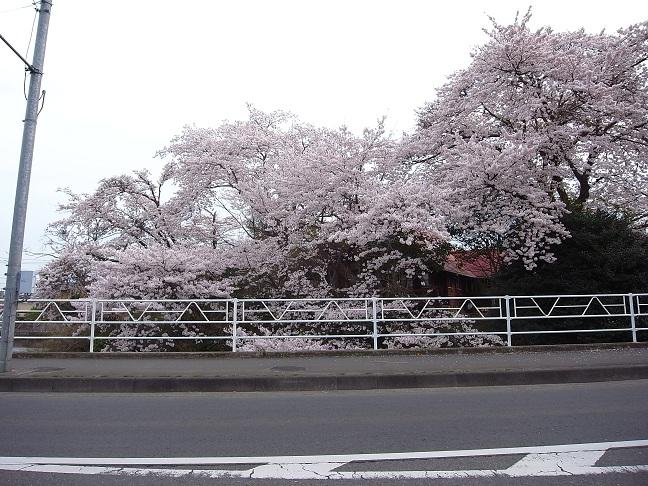 三反田の家 木工事中 2012/4/13_a0039934_18145031.jpg