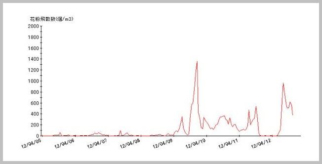 スギ花粉は今週がピークか。_e0084756_820333.jpg