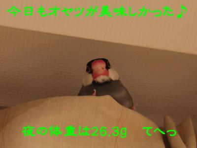 b0158061_0192993.jpg