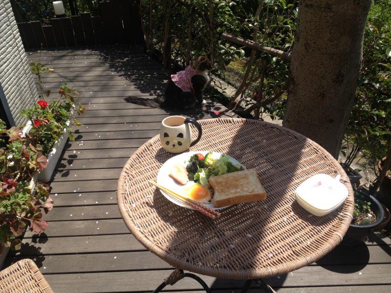 お家で朝食☆_c0151965_18581874.jpg