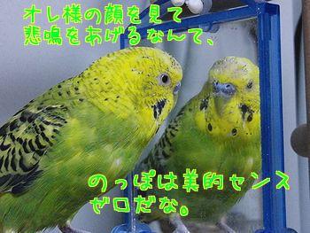 f0196665_2295995.jpg