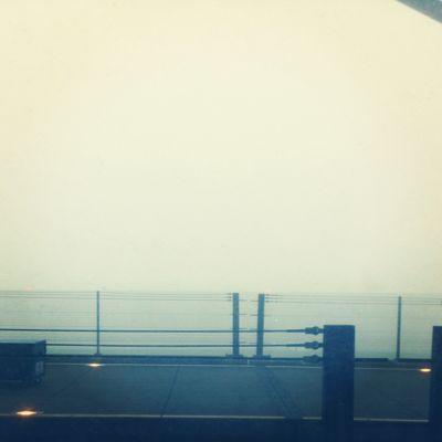 すっごい霧!!_d0106578_14332936.jpg