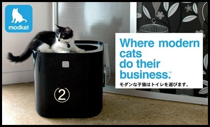 新居・猫のトイレを考える。_e0237680_1240591.jpg