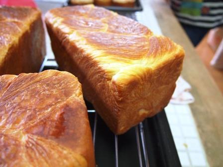 酒種でデニッシュとチーズのブリオッシュ風_e0167593_121683.jpg