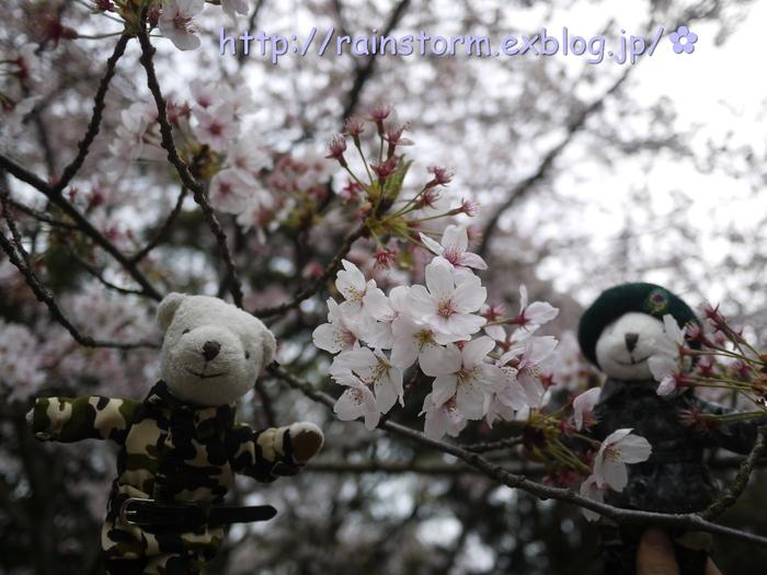 2011 RAIN CHARITY LIVE CONCERT IN JAPAN」DVD_c0047605_7314144.jpg