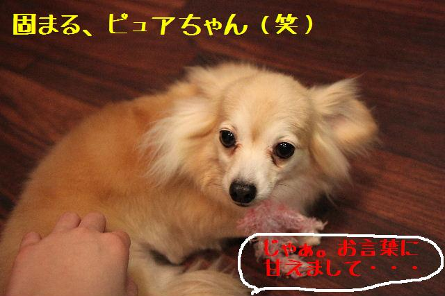 b0130018_9241087.jpg
