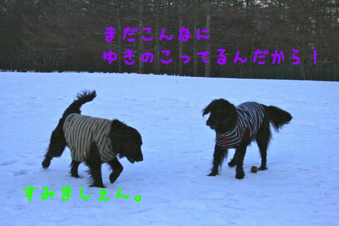 c0237824_22582016.jpg